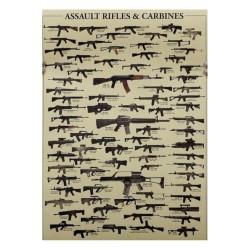 Lámina fusiles y carabinas de asalto